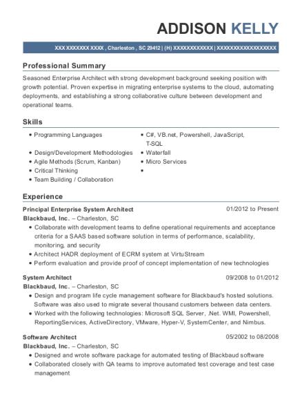 american express project lead resume sample scottsdale arizona