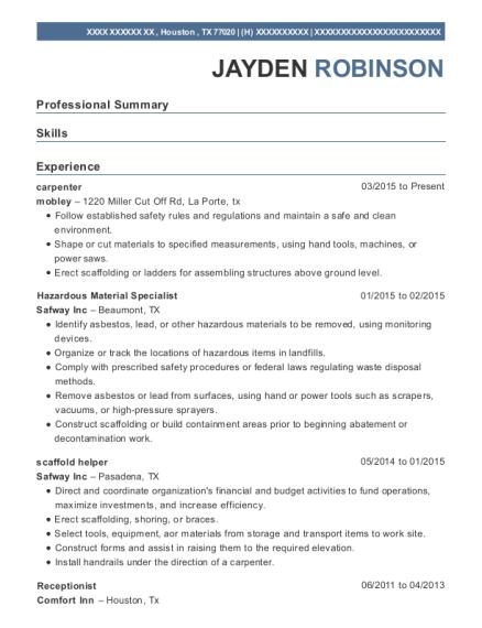 Best Scaffold Helper Resumes | ResumeHelp