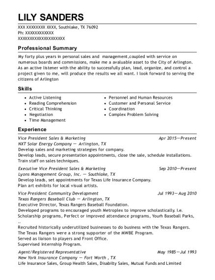 best vice president sales marketing resumes resumehelp