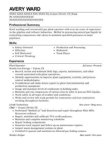 Best Ldar Technician Resumes | ResumeHelp
