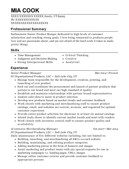 senior product manager resume
