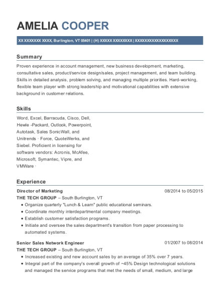Best Senior Sales Network Engineer Resumes | ResumeHelp