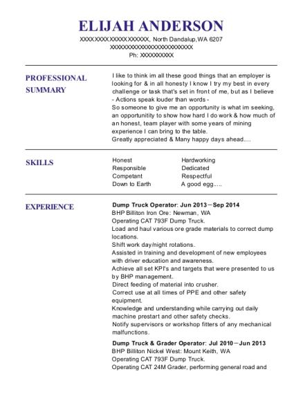 Dump Truck U0026 Grader Operator. Customize Resume · View Resume .