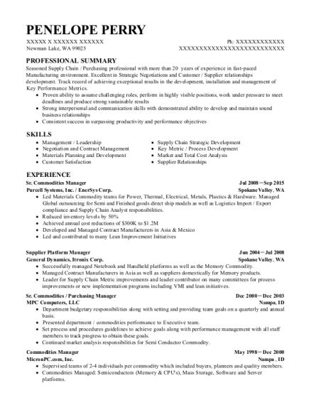 Best Commodities Manager Resumes | ResumeHelp