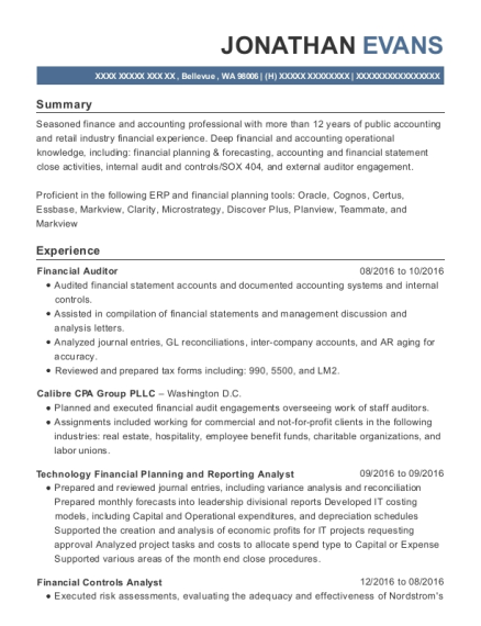 Best Technology Financial Planning And Reporting Analyst Resumes ...